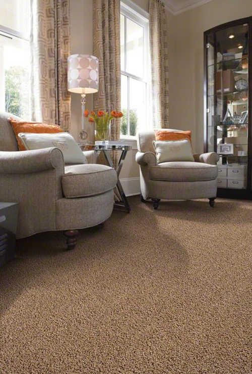 twist carpeting in living room